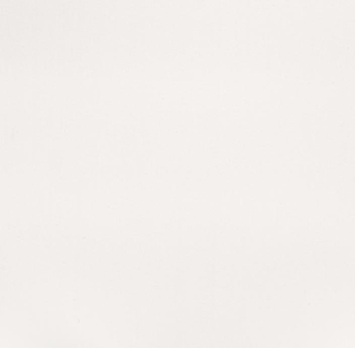LV 1703, Biały