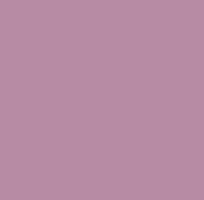Nr 5910 Fiolet