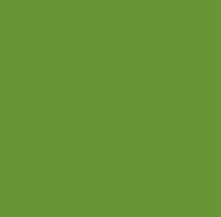 Nr 7303 Zielony