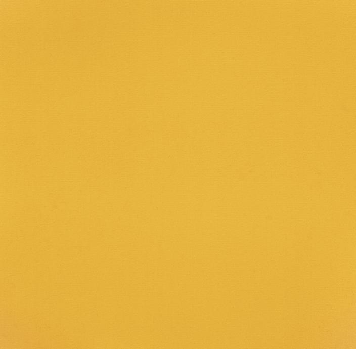 Nr LV 4750Żółty