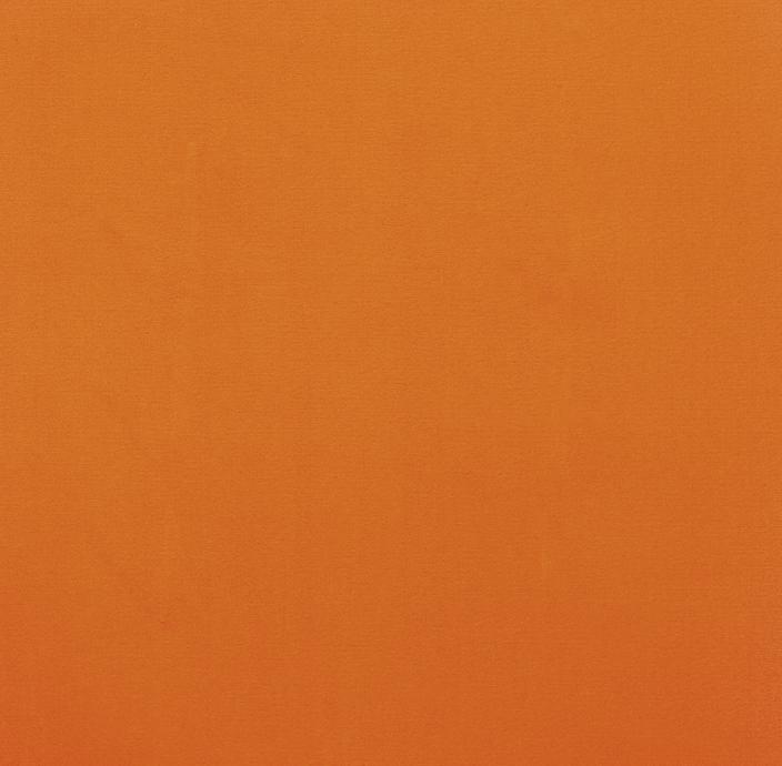 Nr LV 4780 Pomarańczowy